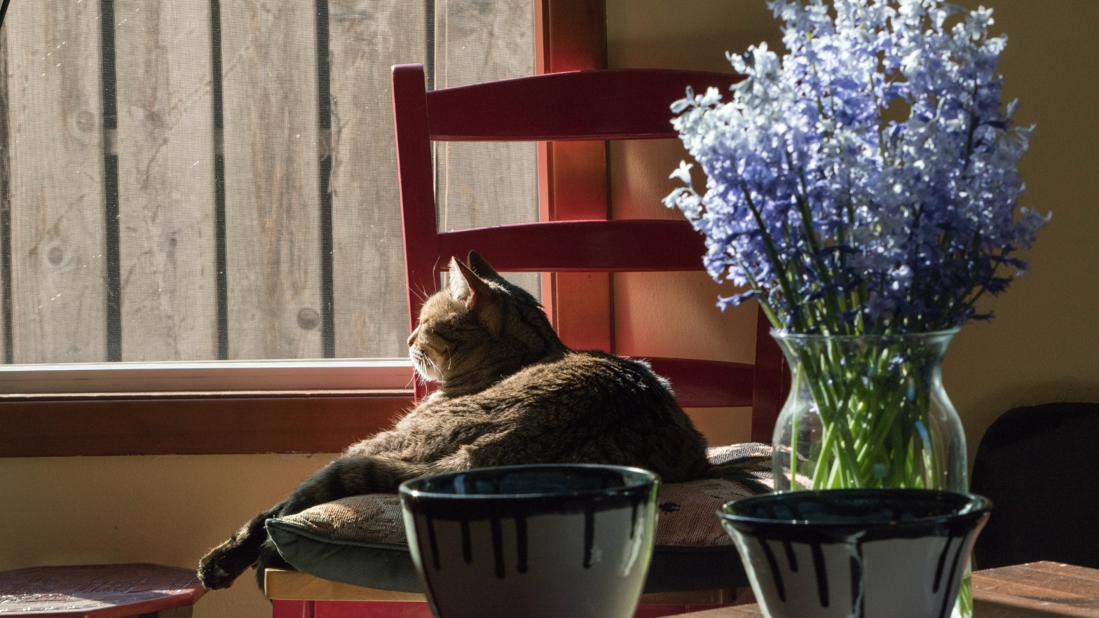 Image shows a cat on a chair by the window. In the foreground is a table with a vase of flowers and two coffee mugs